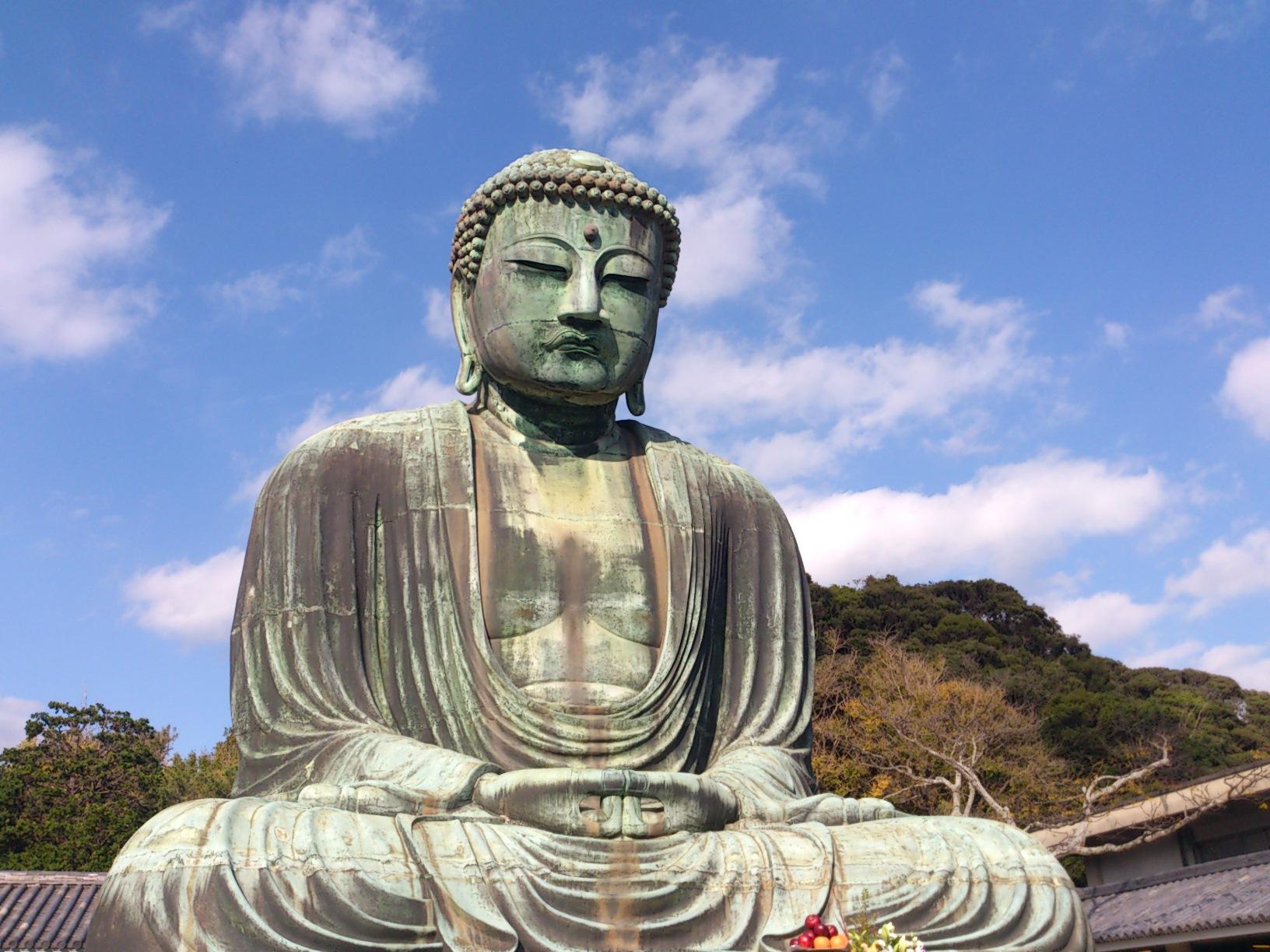 11月15日 高円寺フェス報告とこれから・・・_e0318040_018840.jpg