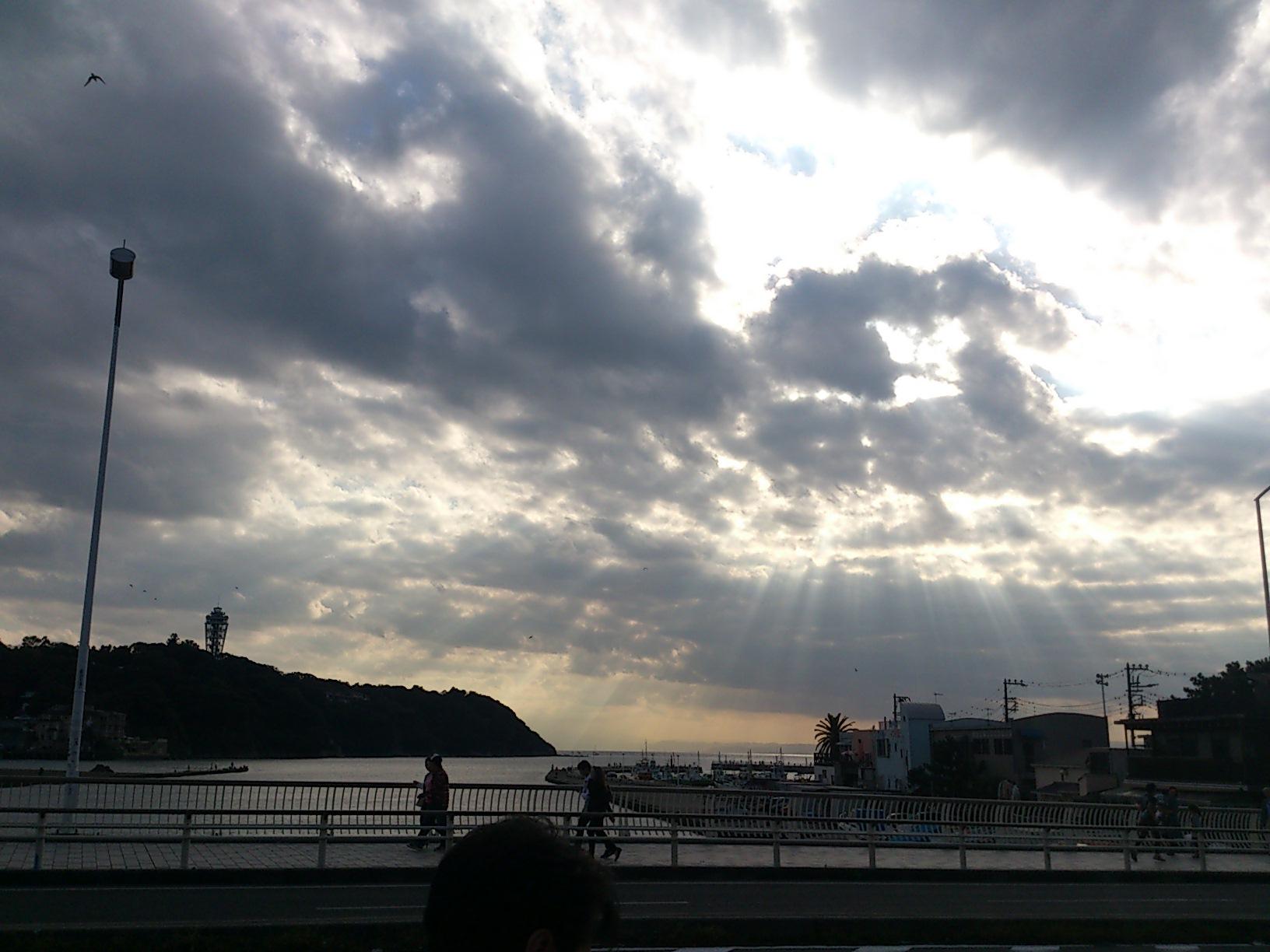 11月15日 高円寺フェス報告とこれから・・・_e0318040_0204657.jpg