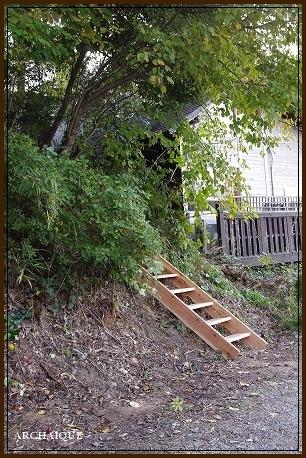 森の中に・・・_c0207890_15310877.jpg