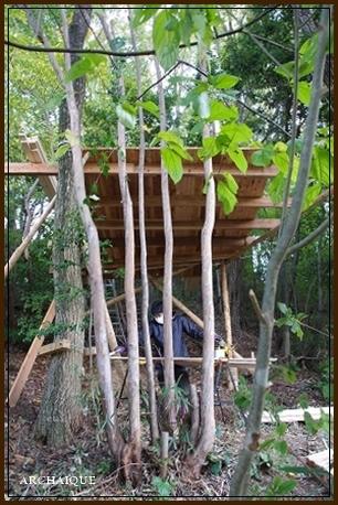 森の中に・・・_c0207890_15313088.jpg
