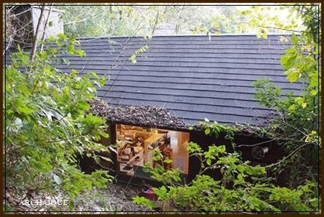 森の中に・・・_c0207890_15313782.jpg
