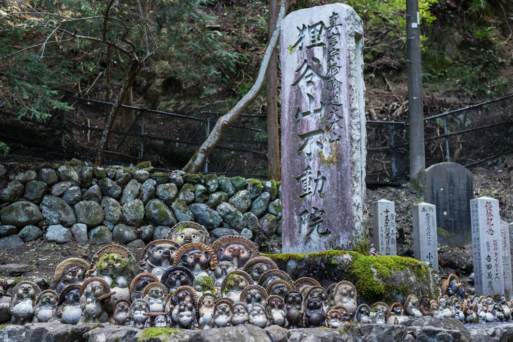 Salsaと巡る京都の旅_f0144394_19143849.jpg