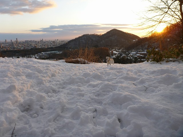 荒井山から_c0048117_14595454.jpg