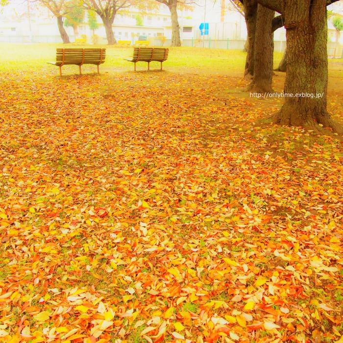 # 1117. 小さいな公園_b0181125_18451187.jpg