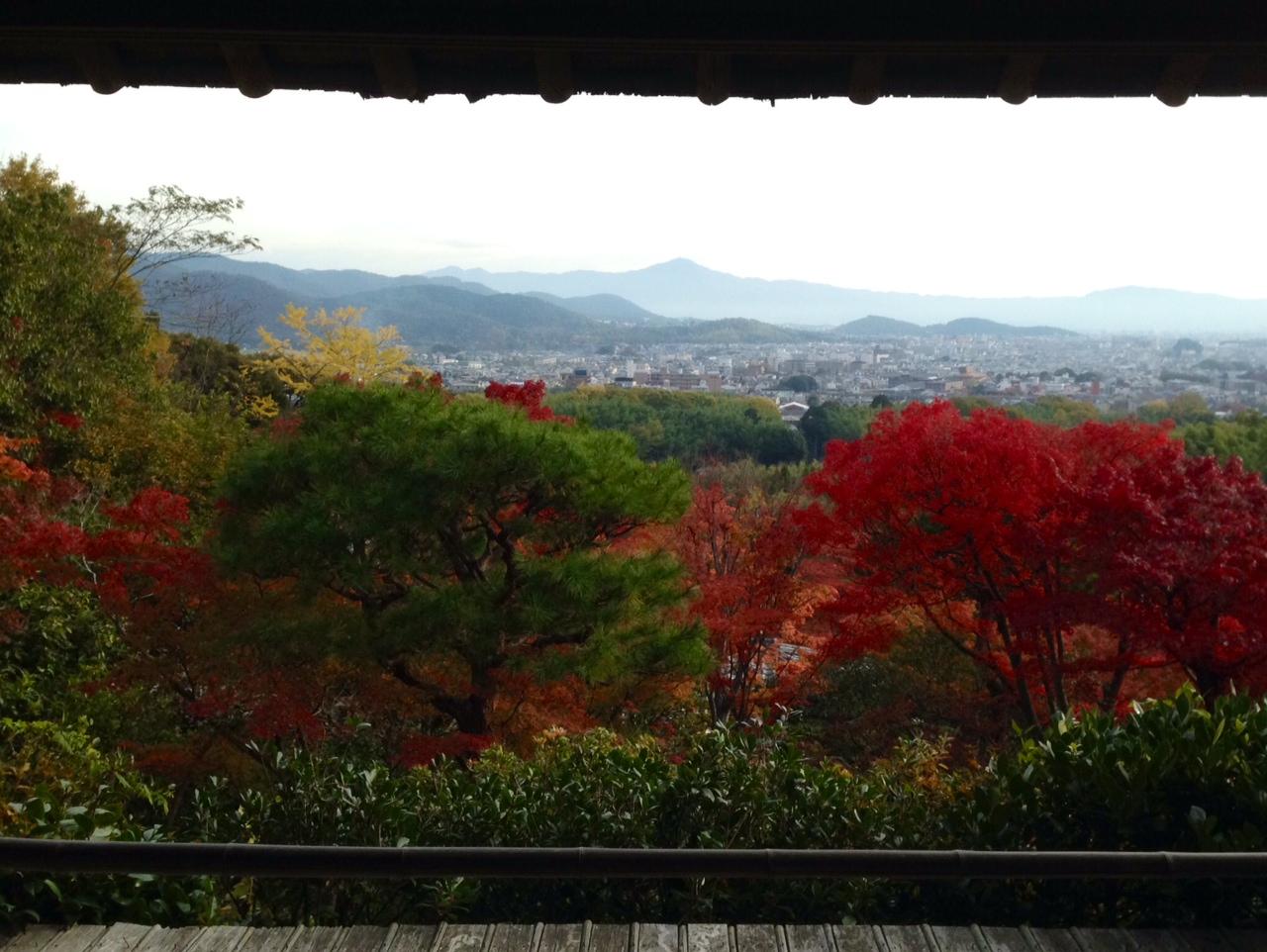 11月16日 嵐山散策_a0317236_7175517.jpg