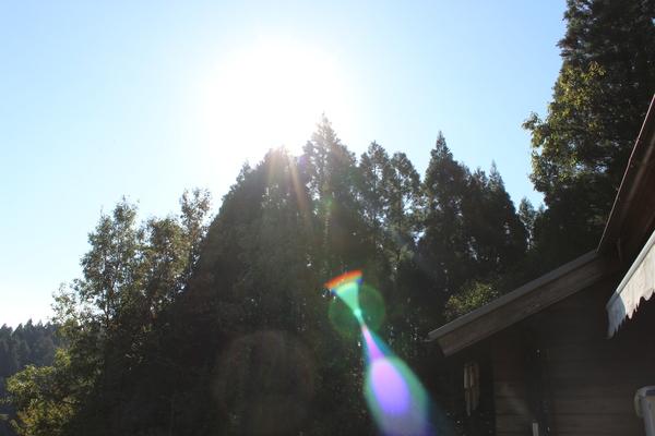 この光の正体は...??_a0174458_2312446.jpg