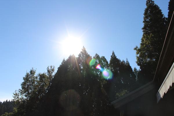 この光の正体は...??_a0174458_2321551.jpg