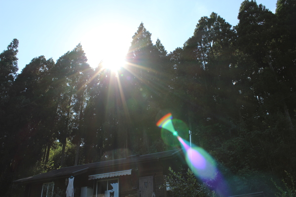 この光の正体は...??_a0174458_2329755.jpg