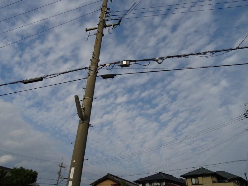 古瓦の年代は・・・?     by     (TATE-misaki)_c0108460_18103501.jpg