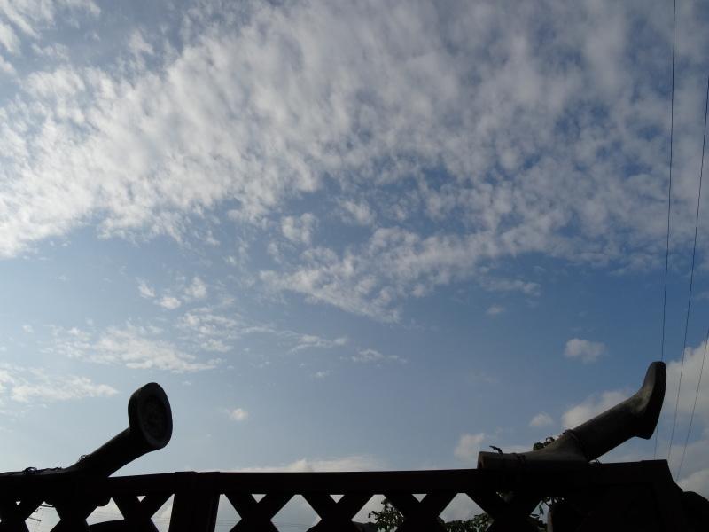 古瓦の年代は・・・?     by     (TATE-misaki)_c0108460_18103676.jpg