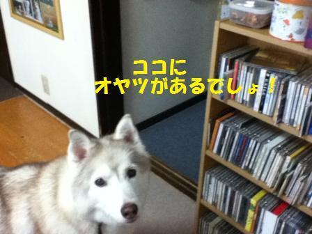 a0241761_17593884.jpg
