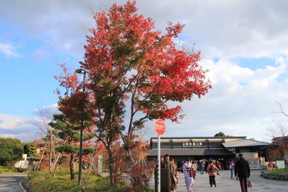 嵐山 紅葉_d0202264_8484121.jpg