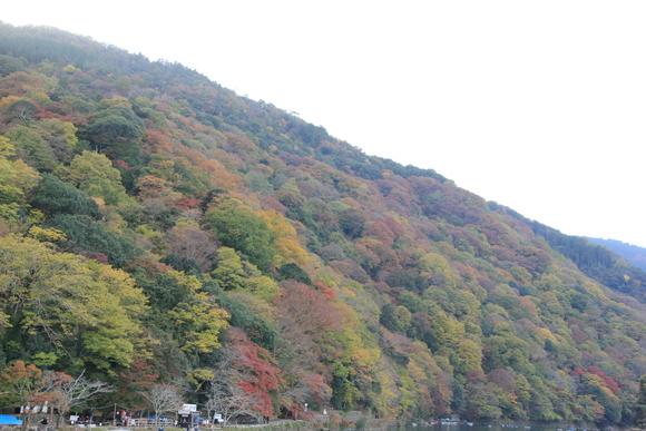 嵐山 紅葉_d0202264_850152.jpg