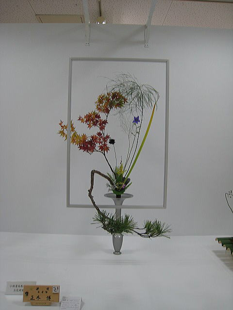 七夕花展_b0189573_1904427.jpg