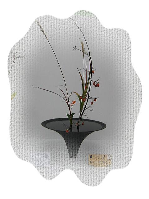 七夕花展2_b0189573_2331093.jpg