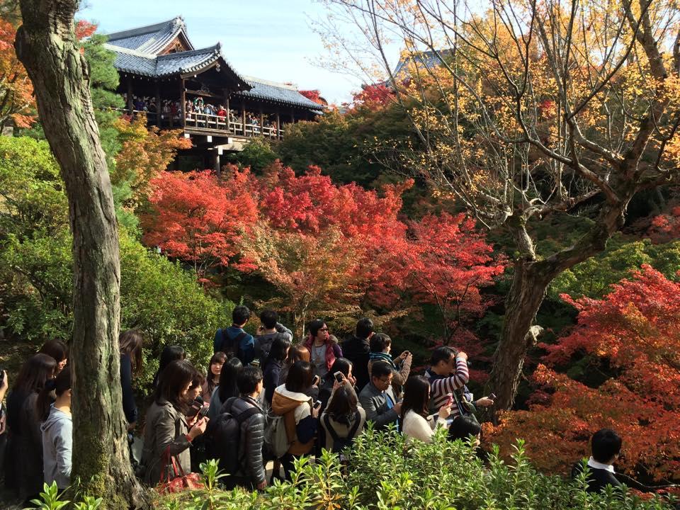 東福寺と一番のよろこび_b0061491_2312597.jpg