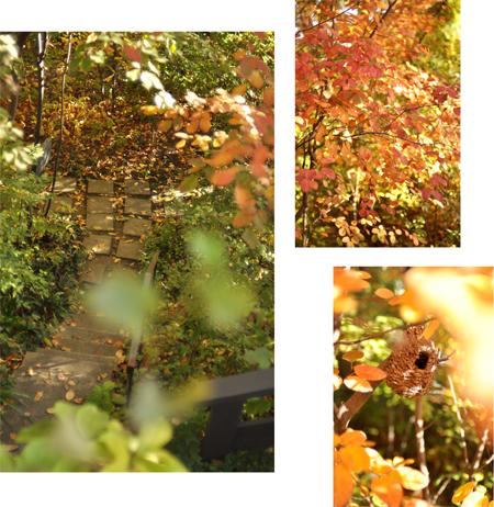 秋の古都へ、小さな旅。【奈良篇その3】_d0174704_12432031.jpg