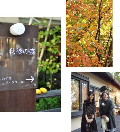 秋の古都へ、小さな旅。【奈良篇その3】_d0174704_1956102.jpg