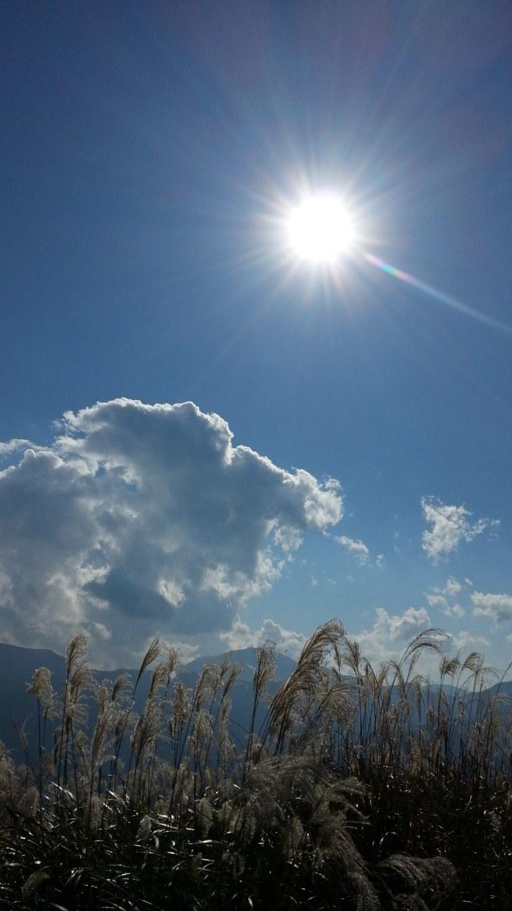 矢倉岳頂上にて_d0157745_20330402.jpg