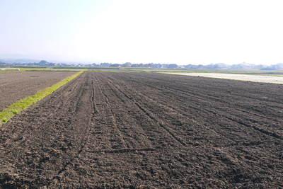 砂田米 来年も美味しいお米を育てるために!その2:れんげの種まきと転圧作業_a0254656_17182577.jpg
