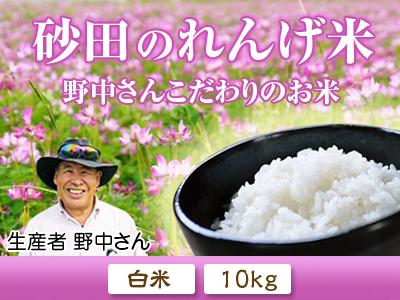 砂田米 来年も美味しいお米を育てるために!その2:れんげの種まきと転圧作業_a0254656_1733628.jpg