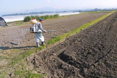 砂田米 来年も美味しいお米を育てるために!その2:れんげの種まきと転圧作業_a0254656_18454061.jpg