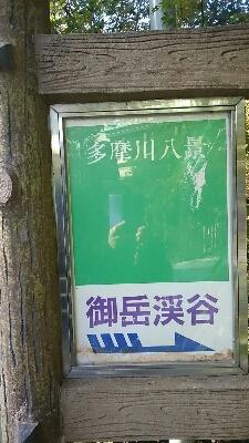 紅葉_b0219170_9195984.jpg