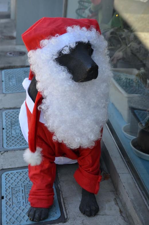 みなこみなよみなめクリスマス_a0019819_11394315.jpg