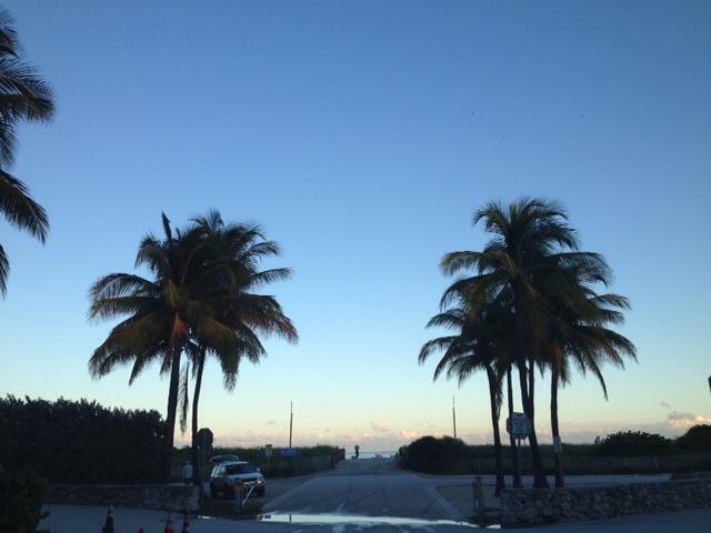 Bye Bye Miami _a0150139_07090100.jpg