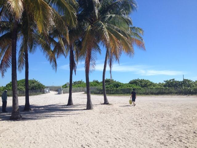 Bye Bye Miami _a0150139_07095560.jpg