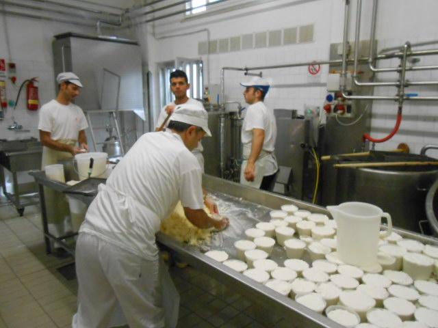 バターの製造_b0305039_049527.jpg