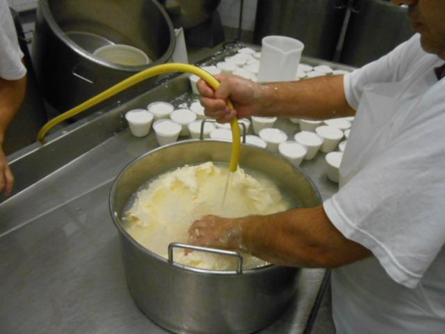 バターの製造_b0305039_113373.jpg