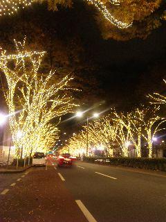 blog:冬支度_a0103940_3123369.jpg
