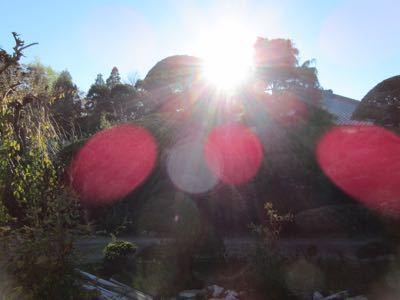 水玉太陽曼荼羅_e0059197_571940.jpg