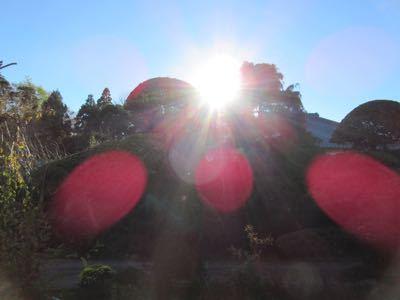水玉太陽曼荼羅_e0059197_572123.jpg