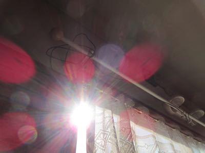 水玉太陽曼荼羅_e0059197_572248.jpg