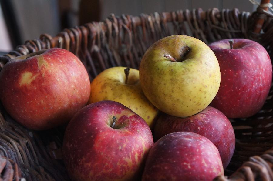 リンゴの季節です_f0106597_20393357.jpg