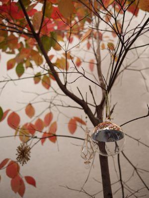 ホシノ天然酵母のバターロールレッスン と クリスマス飾り_f0224465_21315676.jpg
