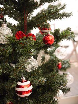 ホシノ天然酵母のバターロールレッスン と クリスマス飾り_f0224465_21315711.jpg