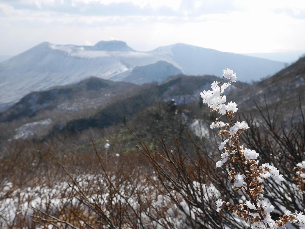 風不死岳北尾根、11月20日_f0138096_2224339.jpg