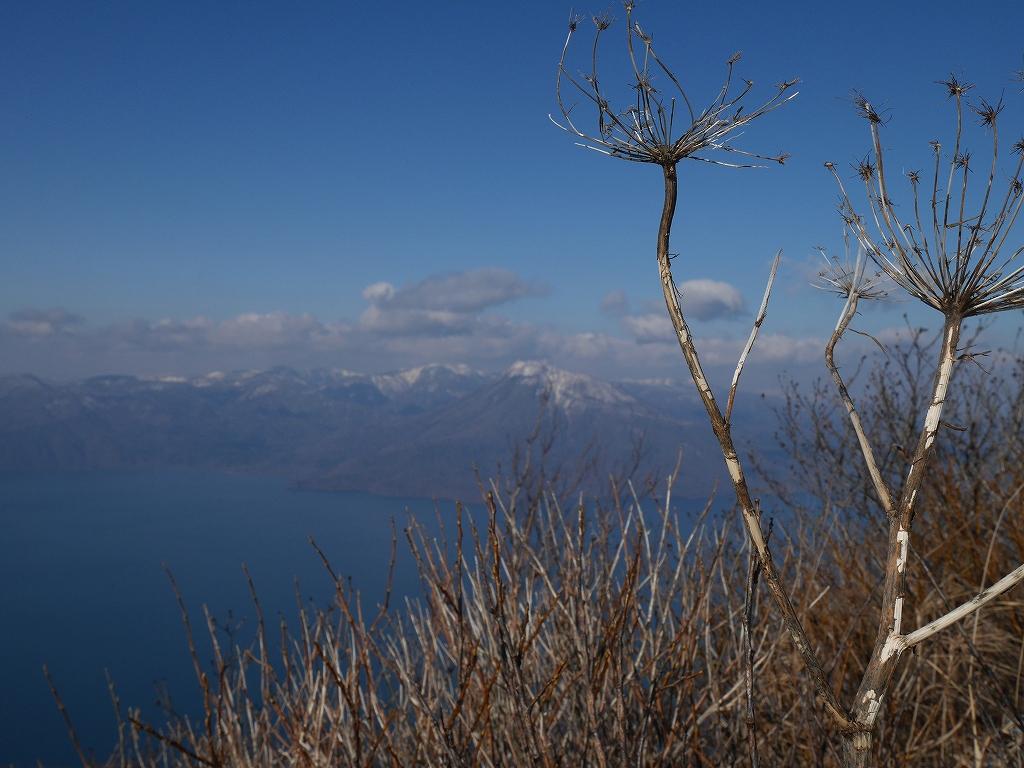 風不死岳北尾根、11月20日_f0138096_223163.jpg