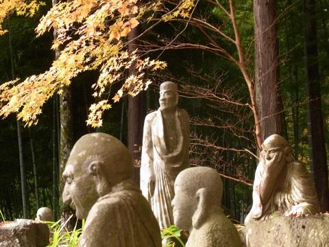 箱根 長安寺の紅葉_c0051102_2211276.jpg