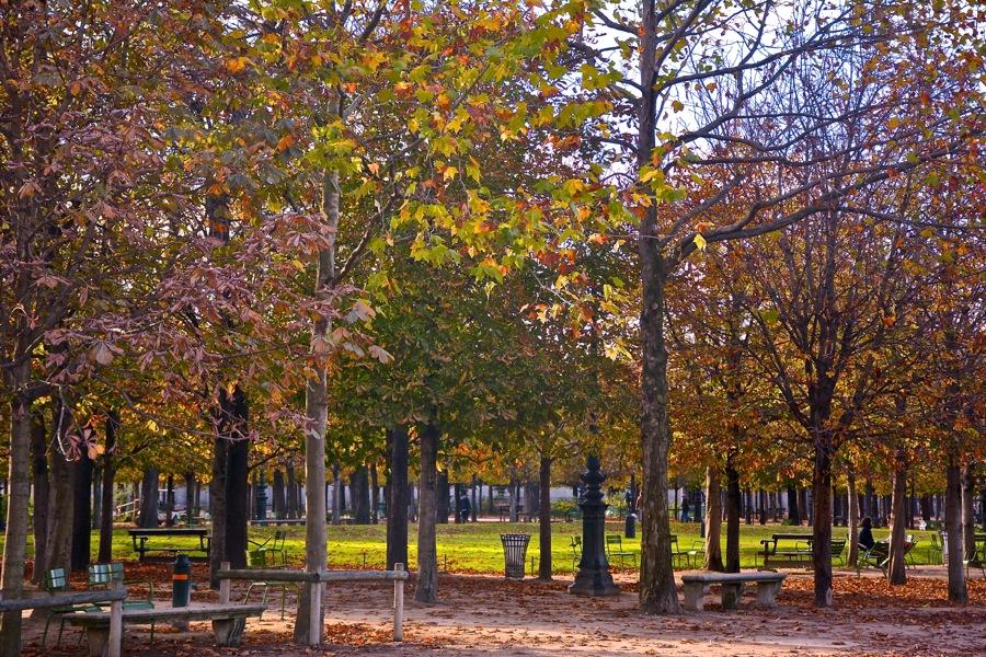 秋のパリ_b0192703_18551174.jpg