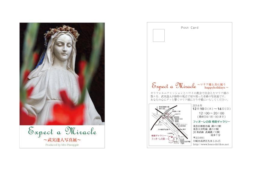 Expect a Miracle  12月10日からのマリア展のタイトル_e0131324_191384.jpg