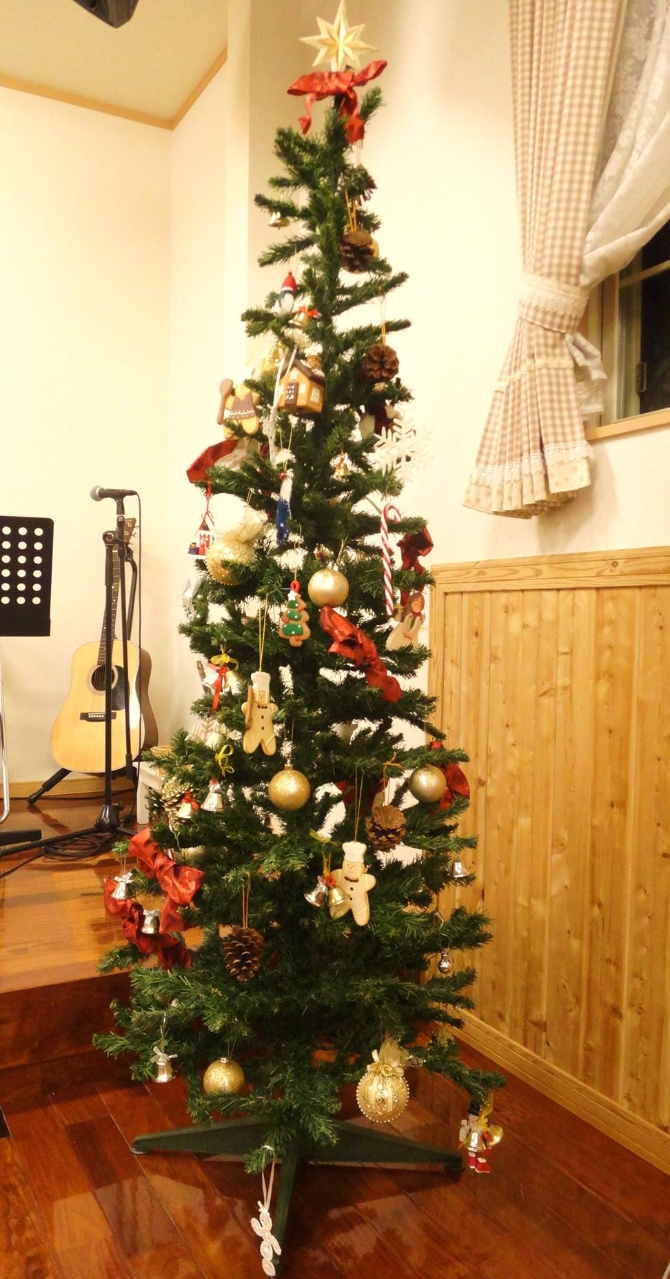 いよいよクリスマスツリー登場! パート1_d0120628_21104578.jpg