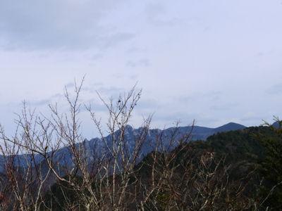 須玉の秘峰・・・道ないんですが・・・_f0019247_9383270.jpg