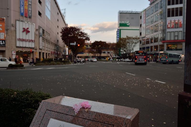 秋の仙台駅前_f0079061_20161787.jpg