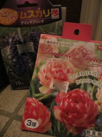 冬に咲く薔薇たちが美しい♪_a0243064_18322056.jpg