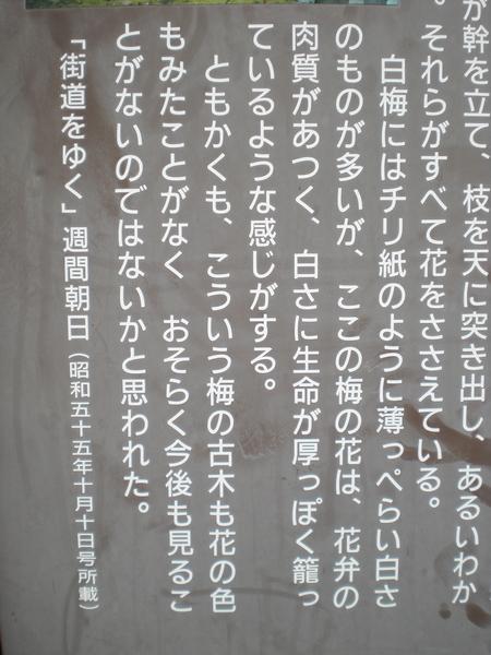 c0013687_0405.jpg
