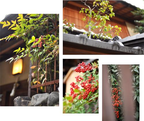 秋の古都へ、小さな旅。【京都ところどころ1】_d0174704_1324789.jpg